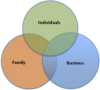 Family Business Needs - 3 Elements Model