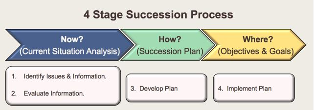 succession diagram